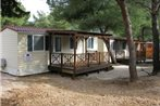 Campsite Mobile Homes Autotrip