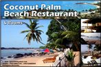 Coconut Palm Guesthouse