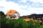 One-Bedroom Apartment in Wernigerode I