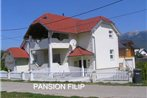 Pansion Filip